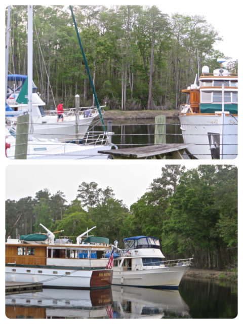 I managed to take couple pictures before Annette and I ran over to the other dock to catch the lines when they arrived.