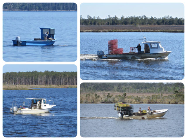It's fun to watch the variety of local fisherman and crabbers out on the water, doing their thing.
