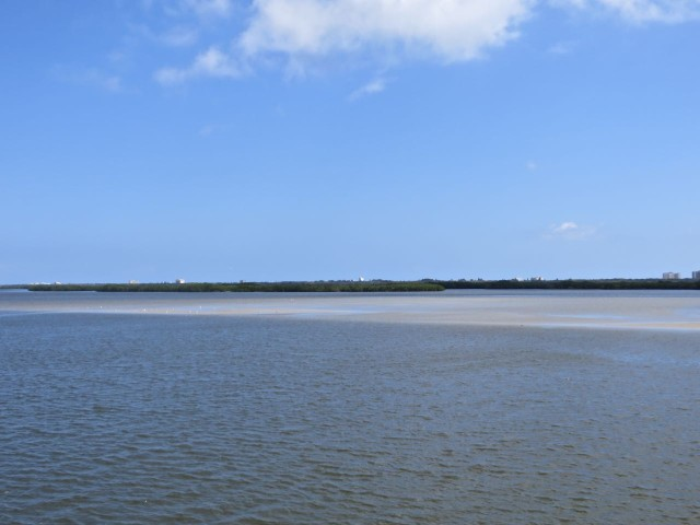 Sand bars along the ICW.