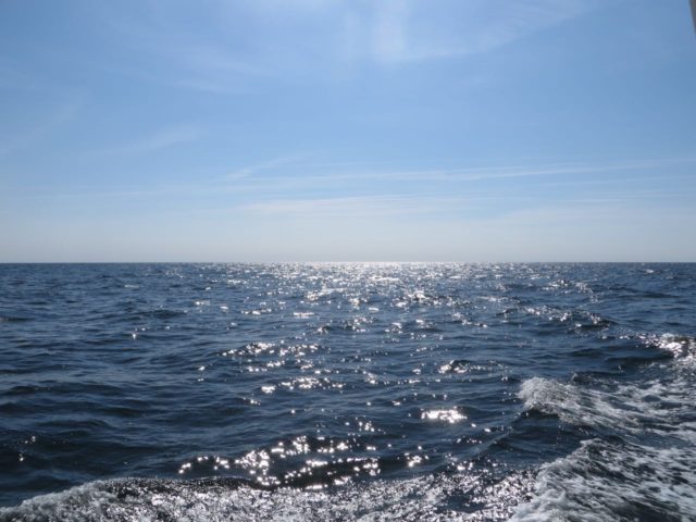 Some moments of sparkling water on the Chesapeake Bay.
