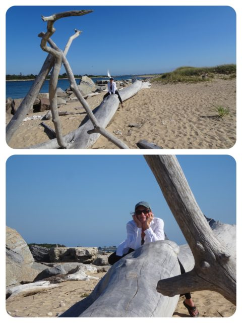 "I climb upon a larger driftwood ""sculpture."""