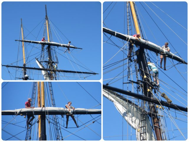Back in the harbor, we had an amazing view of the Oliver Hazard Perry as the crew put the seals away. What a job! High up there int he rigging, hanging and working. Talk about training!