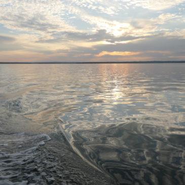 Good-Bye Maine, Homeward Bound